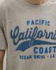 Picture of Men's Short Sleeve T-Shirt in Grey Melange